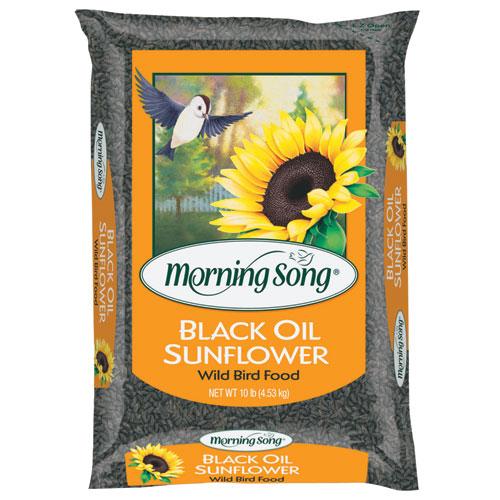 10 Lb Scotts Morning Song Black Oil Sunflower